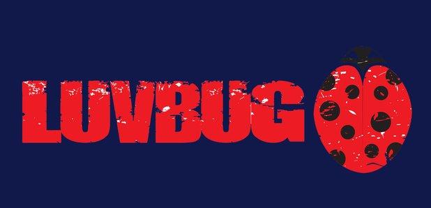 LuvBug New