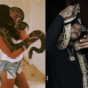 Rihanna Chris Brown Snakes
